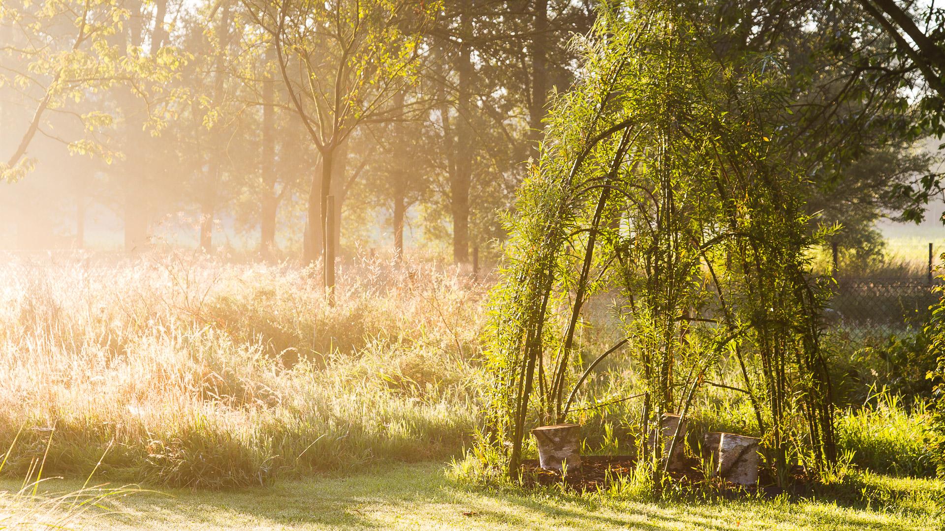 Realisaties - Grass & more